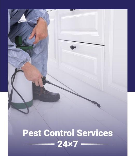 pest control perth